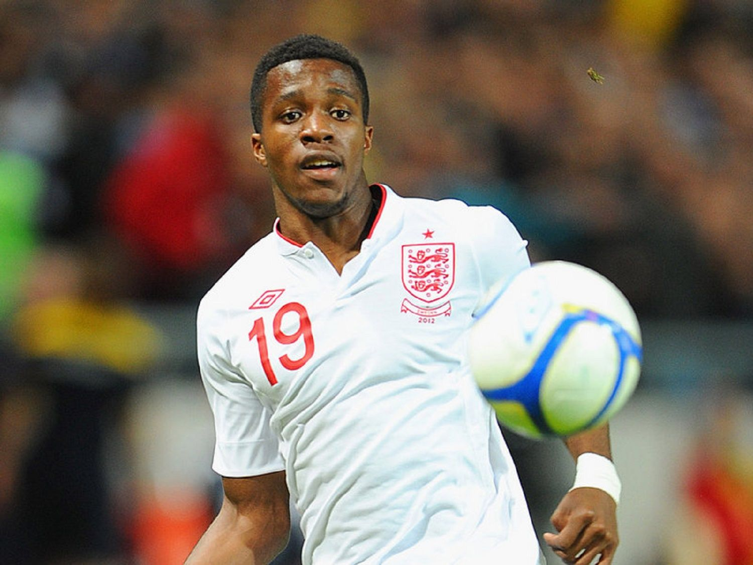 Image result for wilfried zaha to play for ivory coast
